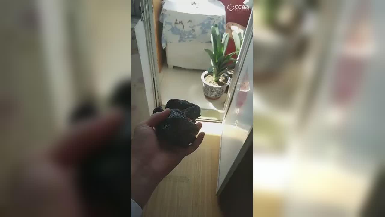 """""""520梦幻热爱季""""-小哥哥征婚-参考1"""