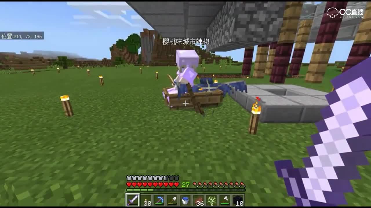 Minecraft我的世界【幻翼的挑战】宠物幻翼 第9期